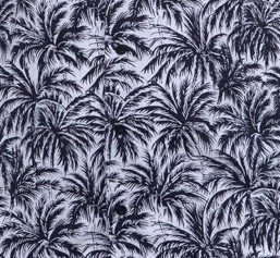 Černobílé palmy